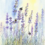 Bees on Lavender - Watercolour