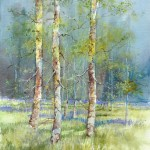 Spring Birches - Mixed Media